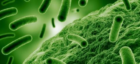 Legionella stopp